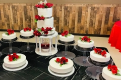 Wedding-Cakes-in-Aurora-CO-Pasteles-para-Boda-in-Aurora-CO-Pasteles-in-Aurora-CO-Cakes-in-Aurora-CO-Cakes-for-all-kind-of-Event-in-Aurora-CO-2