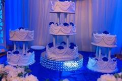 Wedding-Cakes-in-Aurora-CO-Pasteles-para-Boda-in-Aurora-CO-Pasteles-in-Aurora-CO-Cakes-in-Aurora-CO-Cakes-for-all-kind-of-Event-in-Aurora-CO-6