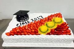 Graduacion (17)