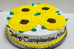Mothers-Day-Cakes-in-Aurora-CO-Birthday-Cakes-in-Denver-CO-Spring-Fling-Cakes-in-Aurora-CO-XV-Years-Cakes-in-Aurora-CO-Cakes-in-Aurora-CO-Wedding-Cakes