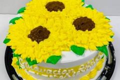 Regional-Cakes-in-Aurora-CO-Cakes-in-Aurora-CO-14