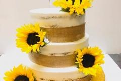 Regional-Cakes-in-Aurora-CO-Cakes-in-Aurora-CO-8