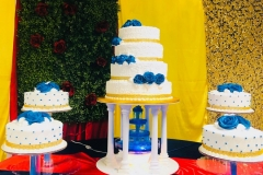 Pasteles-para-15-anos-in-Co-Cake-in-Colorado-51