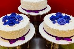 Pasteles-para-15-anos-in-Co-Cake-in-Colorado-53
