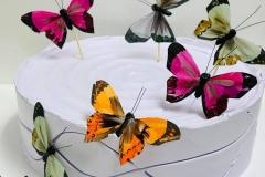 Pasteles-de-Mariposa-in-Aurora-CO-Butterfly-in-Aurora-CO-Cakes-in-Aurora-CO-Pasteles-in-Aurora-CO-10