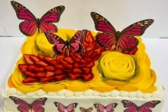 Pasteles-de-Mariposa-in-Aurora-CO-Butterfly-in-Aurora-CO-Cakes-in-Aurora-CO-Pasteles-in-Aurora-CO-3