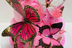 Pasteles-de-Mariposa-in-Aurora-CO-Butterfly-in-Aurora-CO-Cakes-in-Aurora-CO-Pasteles-in-Aurora-CO-8