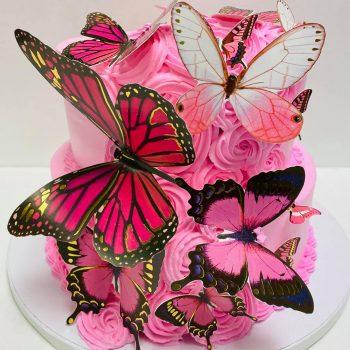 Pasteles de Mariposa in Aurora CO, Butterfly in Aurora CO, Cakes in Aurora CO, Pasteles in Aurora CO (8)